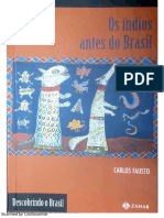 FAUSTO, Carlos. Os índios antes do Brasil.pdf