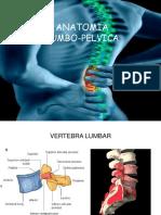 62199060-anatomia-lumbopelvica-1.pdf