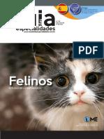 Felinos Espanhol