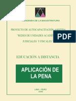 aplica_de_la_pena.pdf
