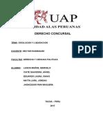 Disolucion y Liquidacion Final 1