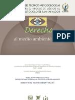 PUDH-UNAM-CNDH Derecho al Medio Ambiente Sano