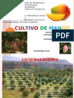 El Mango, Exposicion