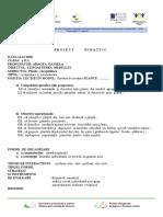 ARAGEA DANIELA proiect de lecție.doc