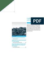 CU_V17.pdf