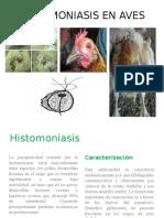 Histomoniasis en Aves