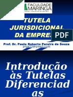 Tutela Juridicional Da Empresa 2012