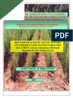 recomendaciones-tecnicas_kaahee.pdf