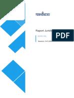 Raport Firmă Demo-Română