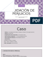 Liquidación de Perjuicios R. Civil