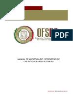 AUDITORIA DE DESEMPEÑO.pdf