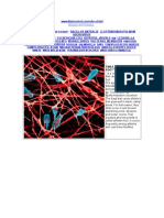 Gambar2 Bakteri&Virus
