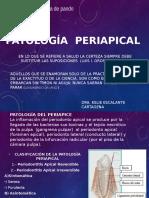 endodonciaPATOLOGÍA__periapical[1]