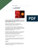 Patologia - Cancer de Cuello