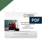 Programa Liderazgo Directivo E-learning