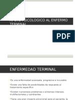 Apoyo Enfermo Terminal