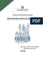 Ayuda Didáctica 2014. Sistemas de Regeneración de Bosques