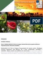 Clase3_Biodiversidad de la flora y Reconocimiento de especies_2013.pdf