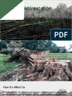 deforestation -810 group 4