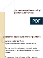 Neuron Motor
