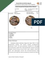 2. Acara Kuantitatif Dan Kualitatif Petrografi