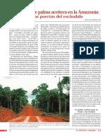 Expansion de Palma Aceitera en La Amazonia 005