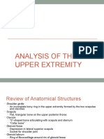 Analysis of Superior Exstrimity