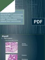 Histopatologi Paru Dan Pankreas Edited FIX