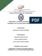 Resumen b.v_tecnicas y Principios de La Ama