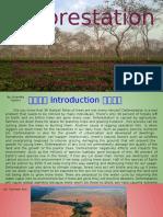deforestation - 811 group 5