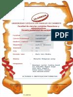 IF-Ensayo_Auditoriafinanc_Miguel.docx