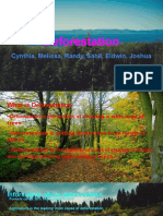 deforestation - 811 group 4