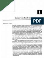 cap_01_8_pi.pdf
