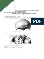 Huesos de La Cabeza Evaluacion