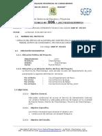 Informe Tecnico Fase de Inversion - 20177