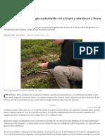 Córdoba_ Generan Energía Sustentable Con El Maní y Abastecen a 8000 Hogares - 28.02