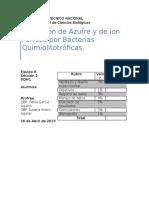 Documents.tips Practica Quimiolitotrofia
