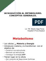 Clase 06 Introducción Al Metabolismo