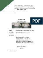 Queso Ucayalino Practica 4