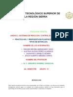 Observación de desarrollo de raíz y tallo primarios.docx