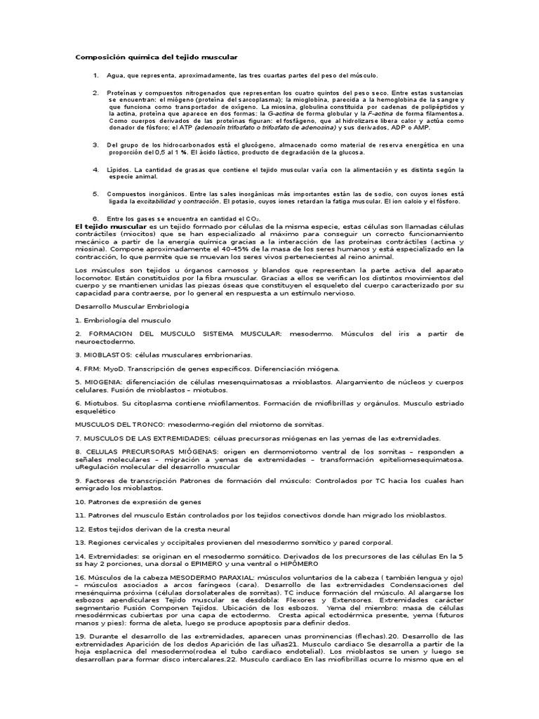 Atractivo Rompecabezas De Palabras Cruzadas Respuestas Anatomía ...
