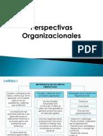Perspectivas Organizacionales