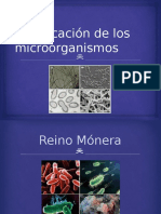 clasificacindelosmicroorganismos-140603200226-phpapp02