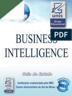 Guia Business Intelligence
