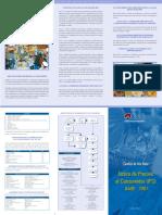 Triptico IPC 2007.pdf