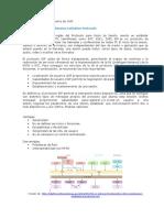 3.1.3-Protocolos de VoIP Jose David Perez