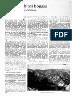 8224-13622-1-PB.pdf