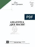 Amazonia qué hacer - dourojeanni