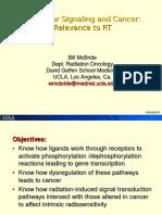 4. Molecular Signaling and Cancer