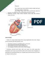 Makalah Mekanisme Kerja Jantung Dan Tekanan Darah